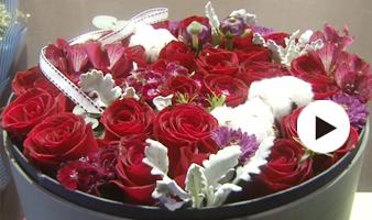 情人节将至 玫瑰花已提前占领市场
