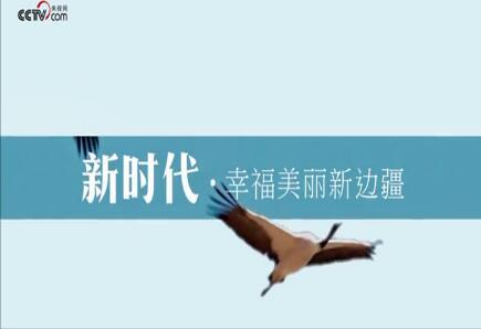 """让广西成为""""网红""""——""""新时代·幸福美丽新边疆""""暨""""庆祝广西壮族自治..."""