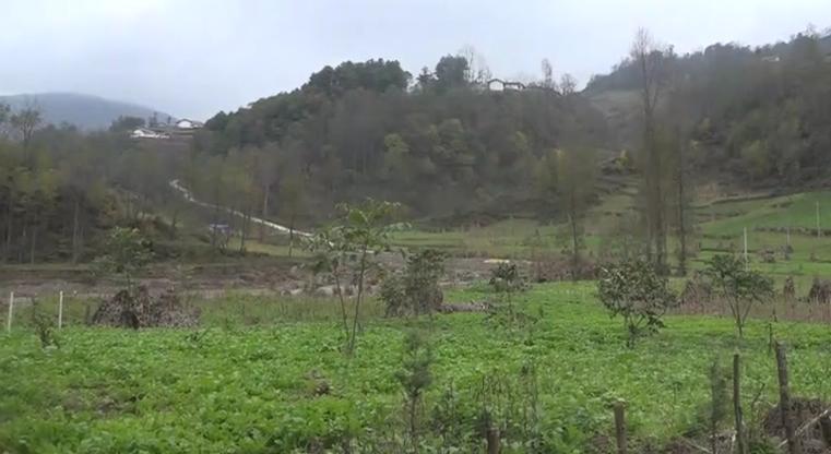 探访大凉山童话村庄:彝家新寨的民俗游建设