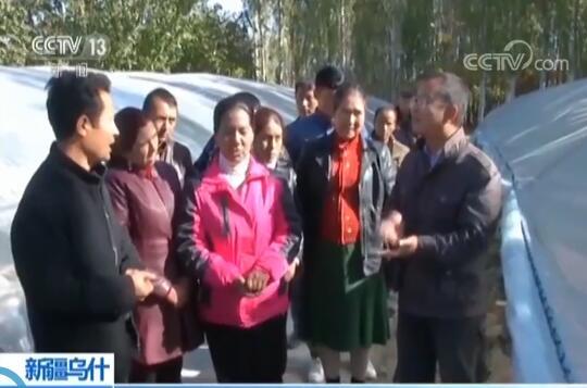 [朝闻天下]新疆乌什 工作队抓产业 帮助村民脱贫