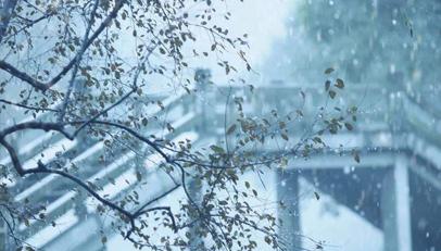 澳门博彩在线娱乐今日最低气温-13℃
