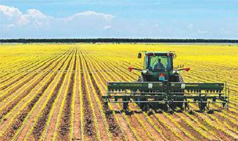 【又是一年春耕到】吉林优化种植结构 绘就春耕图里新景象