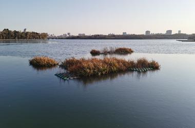 长春南湖公园湖面上冻了