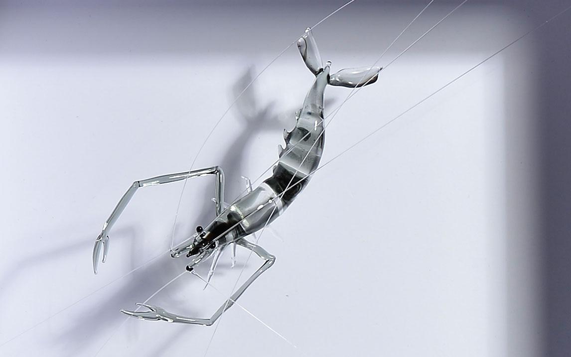 玻璃工艺师的100次尝试:浴火重生水墨虾