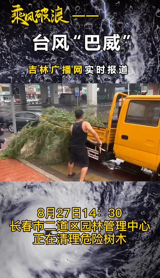 台风来袭前 长春市二道区园林管理中心清理危险树木