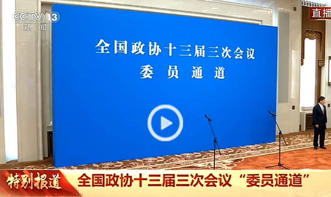 """全国政协十三届三次会议第三场""""委员通道"""""""